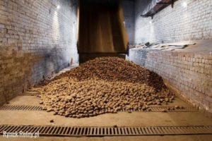 Хранение картофеля - Заготовки