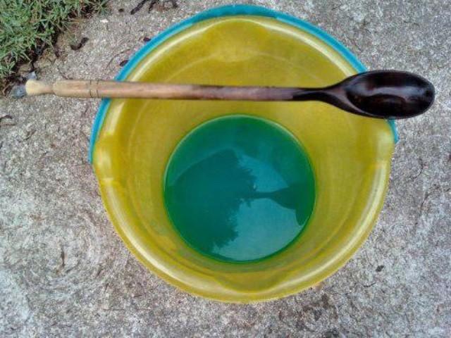 Бордоская жидкость - Вредители и болезни