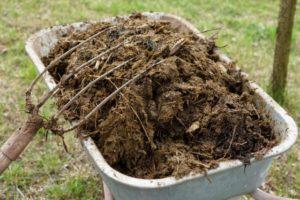 Органические удобрения для огорода - Удобрения