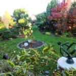 Работы саду осенью - чем обрабатывать деревья - Уход