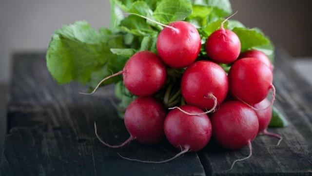 Сортовые особенности редиса - Сорта