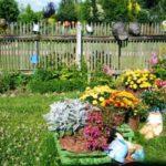 Сад в сельском стиле - Новости